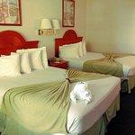 Room 240 - beds