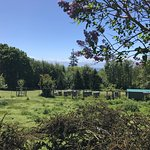 Foto de Tugwell Creek Honey Farm and Meadery