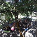 Momento de descanso en hamacas al lado del río