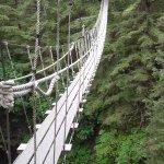 2 suspension bridges to cross