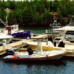 Foto de Big Tub Harbour Resort