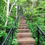 Escalier vers le belvédère