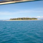 Sailaway Reef and Island Tours Photo