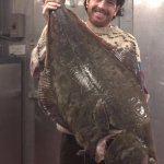 40lb. halibut off the F/V Ruthie B. A filet from this was served at Black-Eyed Susan's that nigh