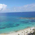 Foto de The Cove Atlantis - Mosaic