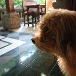 Photo of Ibu Putu's Warung