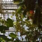 Photo of Botanischer Garten Berlin