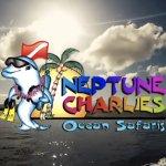 Neptune Charlies Ocean Safaris