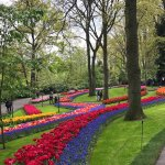 Photo de Keukenhof