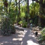 Beautiful Jardin Majorelle