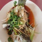 Fresh black bass with ginger and scallions