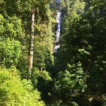 Hike to Cape Lookout 5 mins from room. Munson Falls 20 mins from room. Both gorgeous.