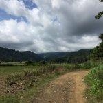 Photo de ATV Adventure Tours Costa Rica