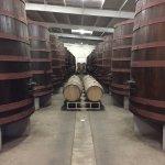 Wine Storage 2