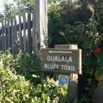 Gualala Bluff Trail
