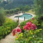 Villa Sangiovese Foto