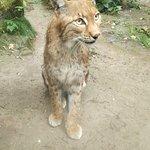 Photo de Zoo Duisburg