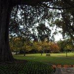 Inside the Fitzroy Gardens !