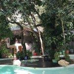 Photo de La Tortuga Hotel & Spa
