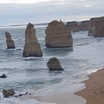 Great Ocean Road Trips - Day Tours Foto