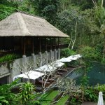 Photo of Maya Ubud Resort & Spa