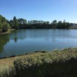 P'tit Dej-HOTEL Bordeaux Lac의 사진