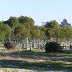 Le cimetière des gardiens