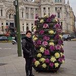 Красивые цветочки на площади