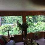 Lobby Windows - Bird Feeders Outside