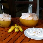 Fresh coconuts on our deck