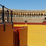 Photo of Plaza de Toros de la Maestranza