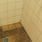 This was our shower floor for $300 per night