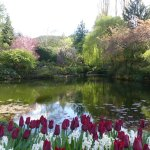The perfect season for visiting Butchart Gardens
