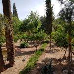 Photo de Cyber Parc Arsat Moulay Abdeslam