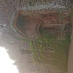 DSC_1097_large.jpg