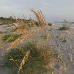 Captiva Beach Foto