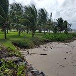 Photo of Serrambi beach