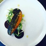 Mackerel, Fennel and Cucumber Salad, Beetroot and Confit Lemon