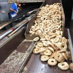Making fresh bagels