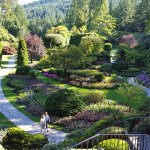 Don't Miss a quick trip to Butchart Gardens - breath-taking!
