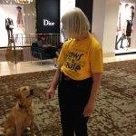 Bella , the Ambassador Canine !!