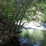 Oak Creek at Briar Patch
