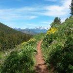 Putt-Putt trail