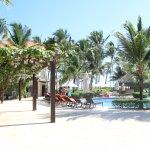 Foto de Dreams Palm Beach Punta Cana