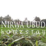 Photo of Nirwa Ubud Homestay