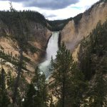 Main waterfall in Yellowstone