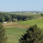 Foto Banyans on the Ridge