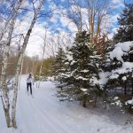 One of the well groomed singletrack classic ski trails at Maplelag.