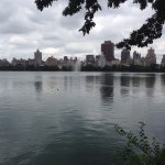 Photo of Central Park