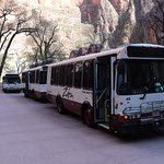 "Zion ""free"" shuttle service in the park"